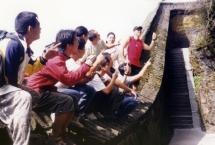 10wudonshanup