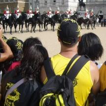 328horses